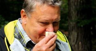 Unbekannter Pilz: Der Geruch hilft Ferdinand Messner beim bestimmen der Sorte