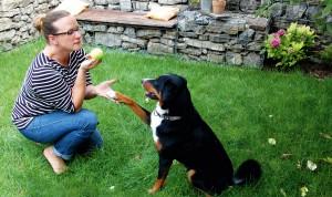 Hundetraining: Alexandra Nohls Hündin Emma hört nicht immer so wie auf diesem Bild.