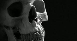 Stettfeld | Mordgifte in Stettfeld – Ein Vortrag zum Gruseln