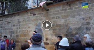 Bretten | Sensenmann und Rattenvolk: Pestführung in der Brettener Altstadt