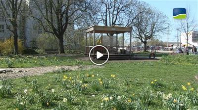 Bruchsal | Zurück zur Hundewiese – Aus für Projekt Bürgergarten