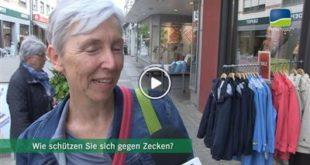 Bruchsal | Umfrage: Wie gut kennen sich die Bruchsaler mit Zecken aus?
