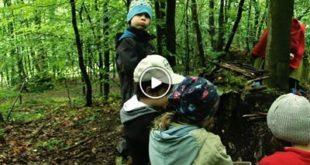 Bruchsal | Waldkindergarten – Die Natur als Spielplatz