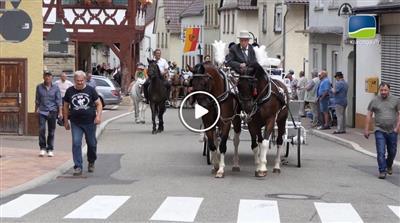 Bauerbach | Mit 150 Pferdestärken auf Prozession in Bauerbach