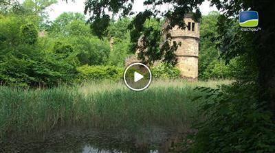 Menzingen | Geheimnisvolle Orte: Die Wasserschlossruine in Menzingen
