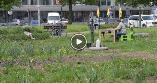 "Bruchsal   Ein Pavillon bereichert jetzt den Bruchsaler ""Bürgergarten"""