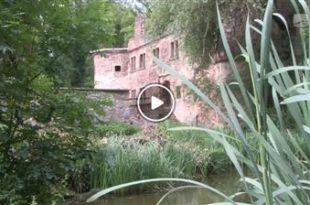 Menzingen | Streifzüge: Die Wasserschlossruine in Menzingen
