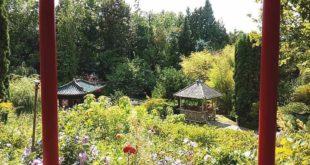 Ausflugsziel Asiatischer Garten Münzesheim