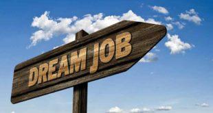 Traum job | pixabay