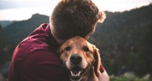 Tierliebe Hund Herrchen Schmusen Treue nspl