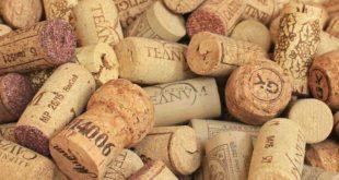 champagne-cork-1350404_1920