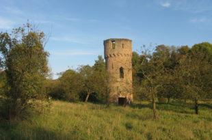 stifterhofodenheim