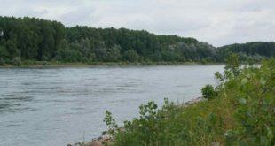 2014.07.05.105958_Rhein_Rheinsheim