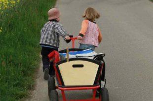 stroller-502934_1920