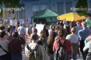 Fridays for Future Demonstration Unteröwisheim