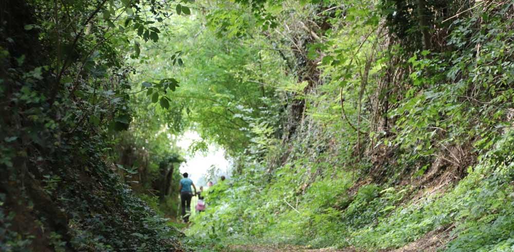 K1 Wanderweg Familienwanderweg Oberöwisheim Kraichtal