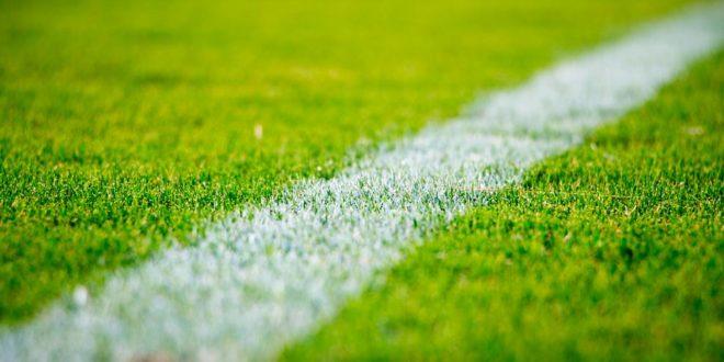 Fußball Rasen Sport Sportplatz
