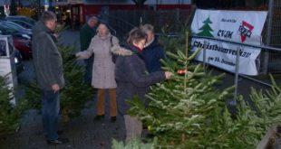 Weihnachtsbäume_Verkauf_CVJM