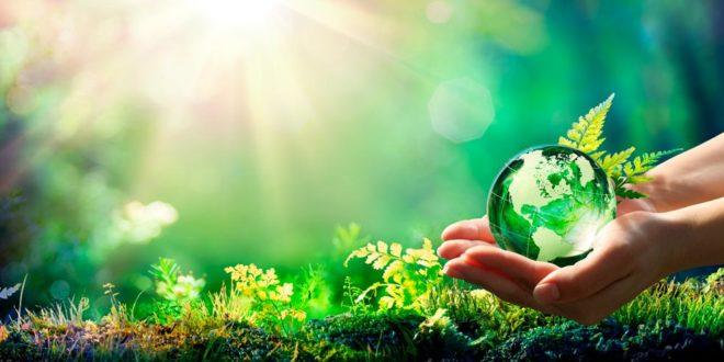 Umweltschutz, Klimaschutz, Öko, Naturschutz