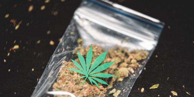 Drogen Marihuana Gras