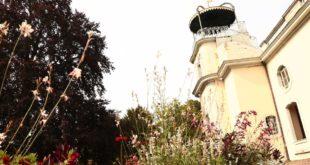 Bergfried Tourismus Programm